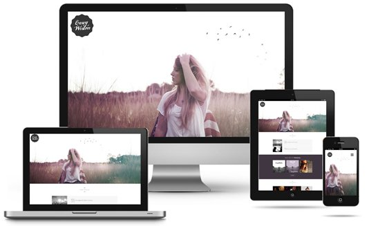 responsive-naples-web-design-mobile