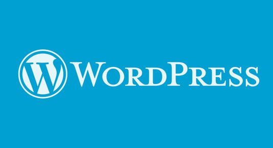 WordPress Website Designer Naples Florida